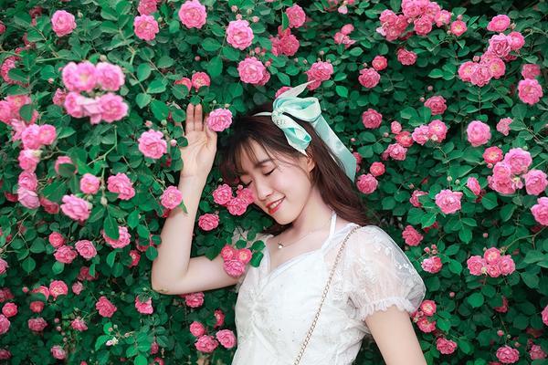 5月16日周日蔷薇花人像拍摄活动